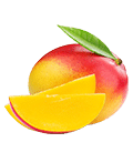 IJssmaken Sanka IJsfiets Mango